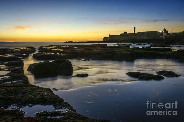 Photograph - Low Tide Cadiz Spain by Pablo Avanzini