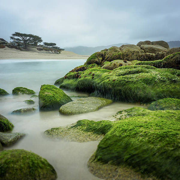 Wall Art - Photograph - Low Tide Carmel California by Steve Spiliotopoulos