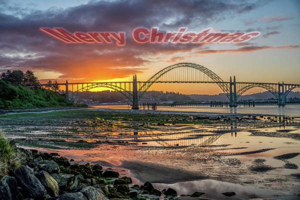 Photograph - Low Tide Christmas by Bill Posner
