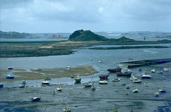 Photograph - Low Tide by Flavia Westerwelle