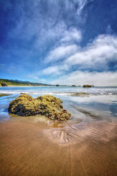 Photograph - Low Tide On The Pacific Coast by Debra and Dave Vanderlaan