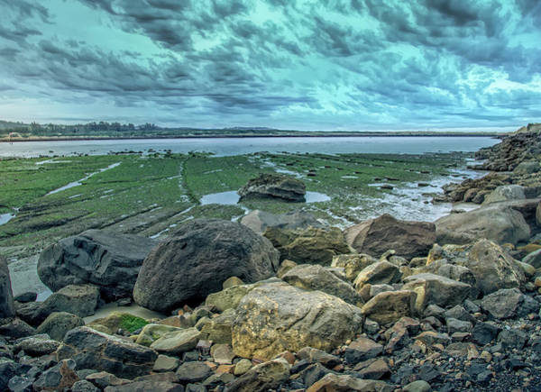 Photograph - Low Tide Paint by Bill Posner