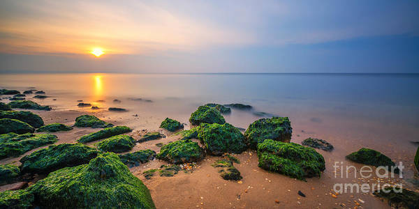 Low Tides Photograph - Low Tide Panorama by Michael Ver Sprill