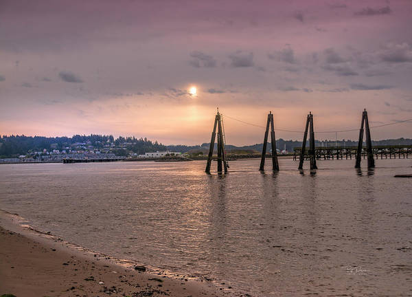 Photograph - Low Tide Posts by Bill Posner