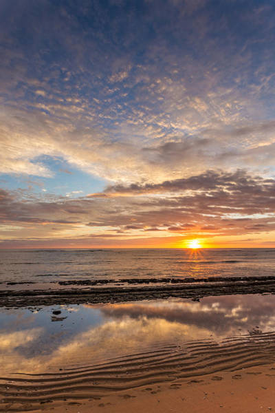 Photograph - Low Tide Sunrise by Pierre Leclerc Photography