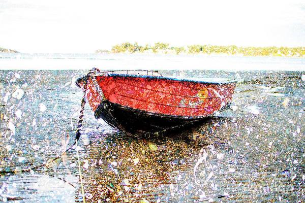 Photograph - Low Tide's Rest by David Emond