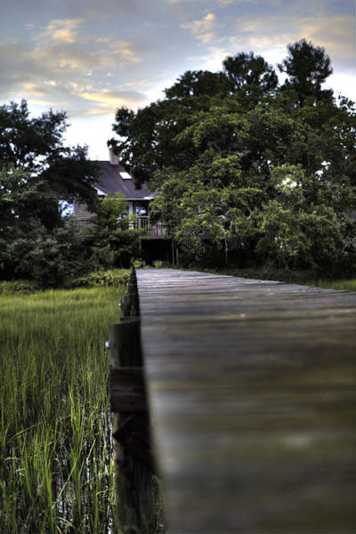 Lowcountry Photograph - Lowcountry Living by Dustin K Ryan