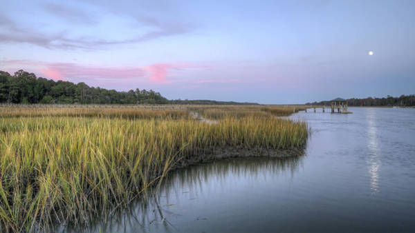 Tidal Photograph - Lowcountry Marsh Grass On The Bohicket by Dustin K Ryan