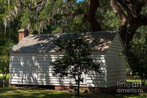 Photograph - Lowcountry Mcleod Historic Site by Dale Powell