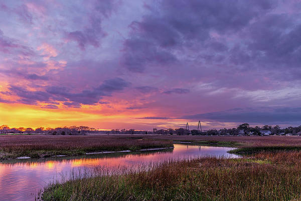 Wall Art - Photograph - Lowcountry Winter  by Drew Castelhano