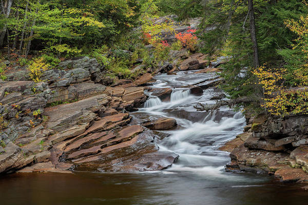 Photograph - Lower Ammonoosuc Falls by Bill Wakeley