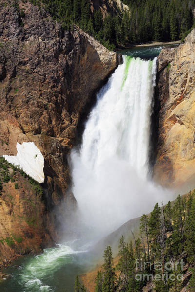 Wall Art - Photograph - Lower Falls From North Rim Drive In Yellowstone National Park by Louise Heusinkveld