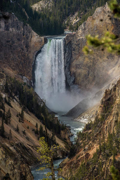 Wall Art - Photograph - Lower Falls by Paul Freidlund