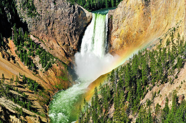 Art Print featuring the photograph Lower Falls Rainbow by Greg Norrell