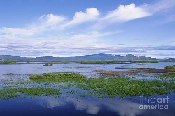 Expanse Photograph - Lower Klamath by Greg Vaughn - Printscapes