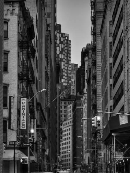Photograph - Lower Manhattan 003 Bw  by Lance Vaughn