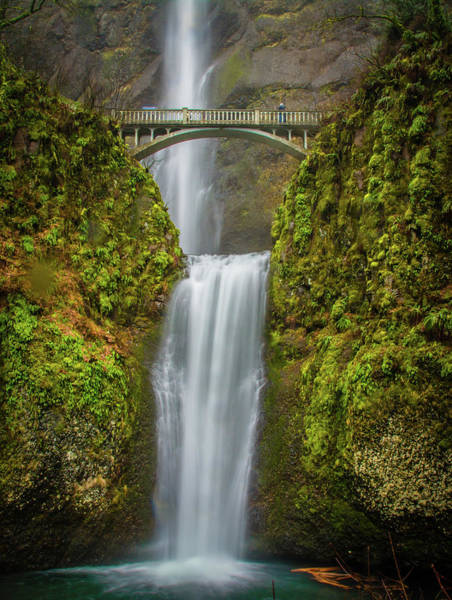 Photograph - Lower Multnomah Falls 1 by Jason Brooks