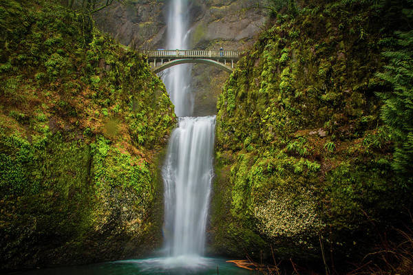Photograph - Lower Multnomah Falls 2 by Jason Brooks