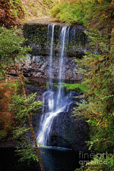 Photograph - Lower South Falls by Jon Burch Photography