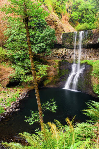 Photograph - Lower South Falls by Michael Blanchette