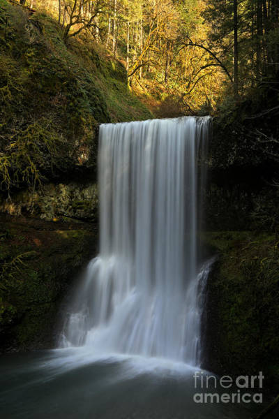 Photograph - Lower South Falls Portrait by Adam Jewell
