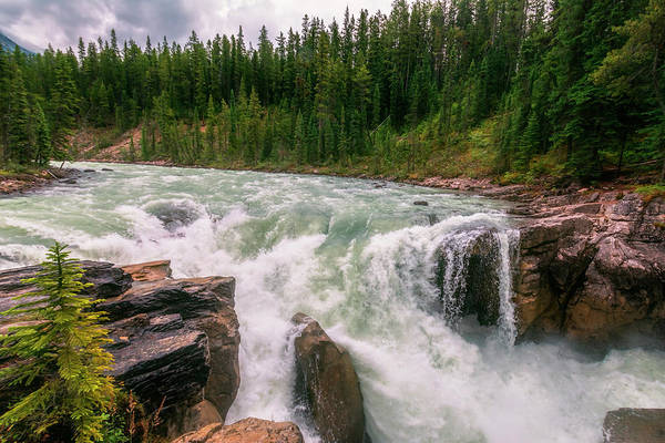 Photograph - Lower Sunwapta Falls Jasper Alberta II by Joan Carroll