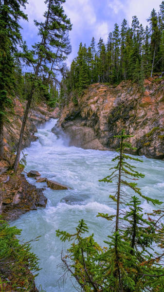 Photograph - Lower Sunwapta Falls Jasper Alberta by Joan Carroll