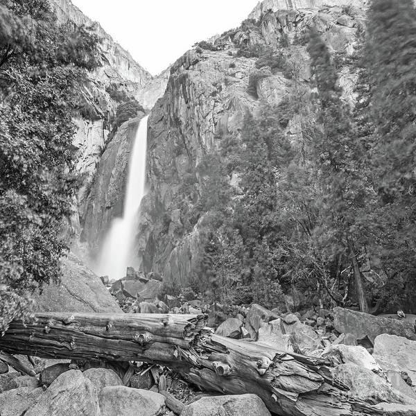 Wall Art - Photograph - Lower Yosemite Falls In Black And White By Michael Tidwell by Michael Tidwell