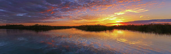 Photograph - Loxahatchee Sunset by Juergen Roth