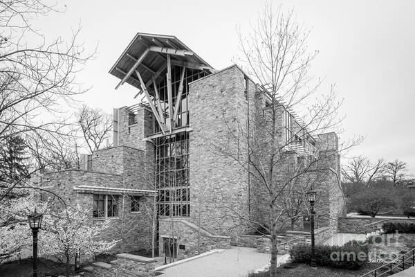 Photograph - Loyola University Maryland Sellinger School Of Business by University Icons
