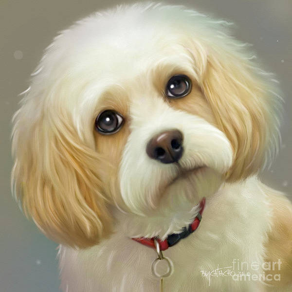 Painting - Lucas Cavachon by Catia Lee