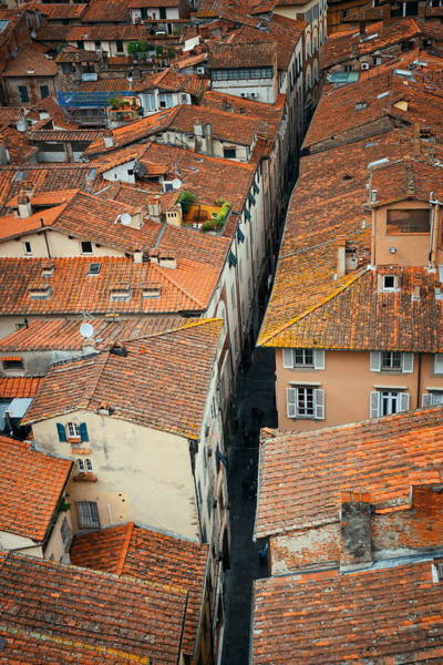 Photograph - Lucca Alley Above View by Songquan Deng