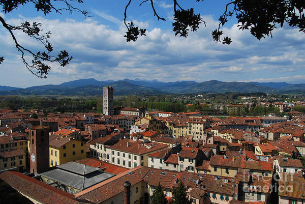 Photograph - Lucca - Italy - From The Top by Carlos Alkmin