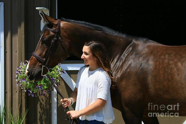 Photograph - Lucia-cora20 by Life With Horses