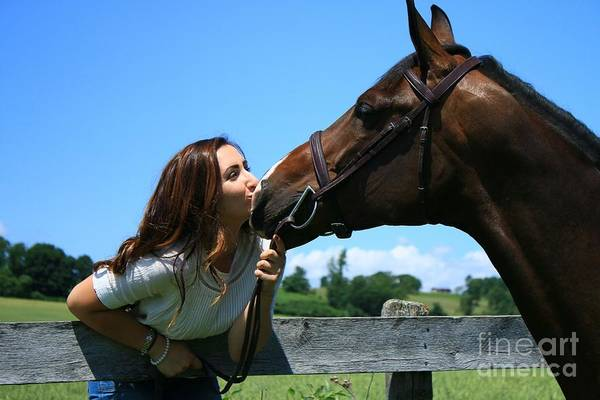 Photograph - Lucia-cora26 by Life With Horses