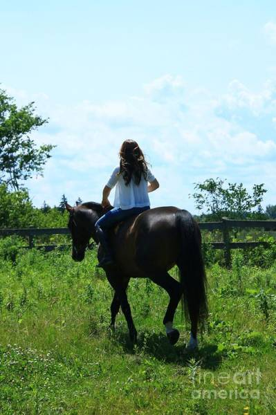 Photograph - Lucia-cora35 by Life With Horses