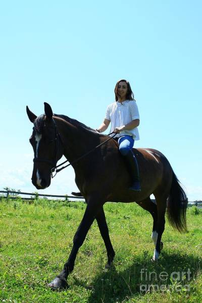 Photograph - Lucia-cora36 by Life With Horses