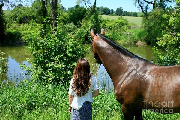 Photograph - Lucia-cora41 by Life With Horses
