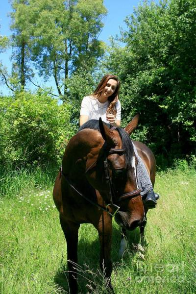 Photograph - Lucia-cora43 by Life With Horses