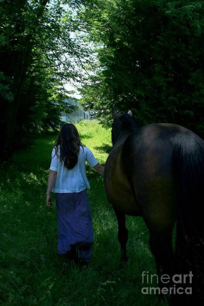 Photograph - Lucia-cora47 by Life With Horses