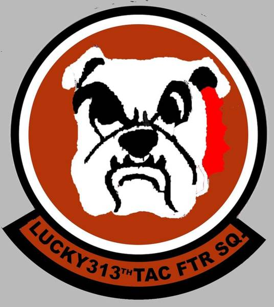 Digital Art - Lucky 313th Tac Ftr Sq by Walter Chamberlain