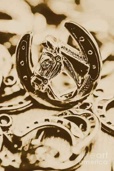 Livestock Photograph - Lucky Cowboys Charm by Jorgo Photography - Wall Art Gallery