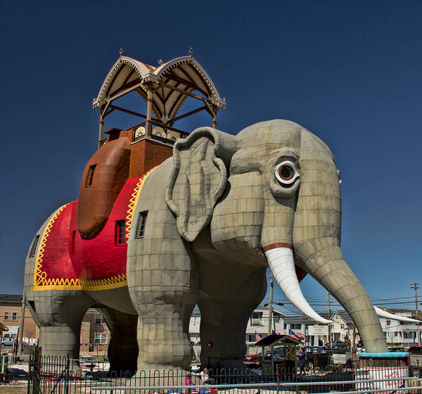 Photograph - Lucy The Elephant I by Kristia Adams