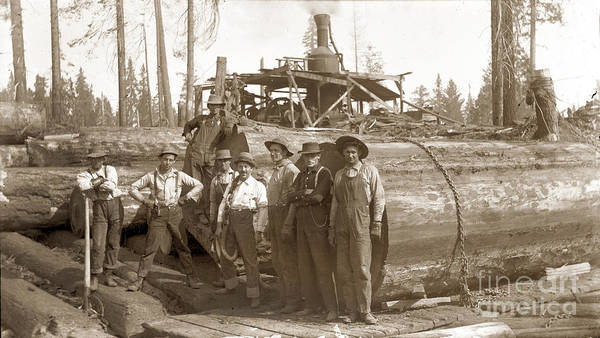 Photograph - lumberjacks next to Redwood longs with a Steam Donkey by California Views Archives Mr Pat Hathaway Archives
