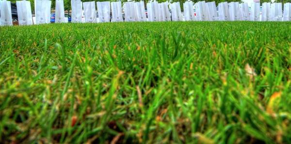 Photograph - Luminaries Along The Grass by Jerry Sodorff