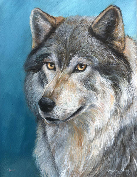 Painting - Luna by Sherry Shipley