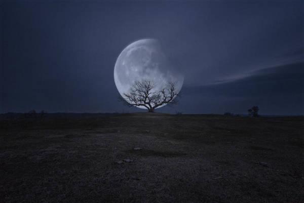 Photograph - Lunar Eclipse by Aaron J Groen