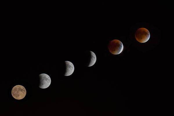 Photograph - Lunar Eclipse  by Brian MacLean