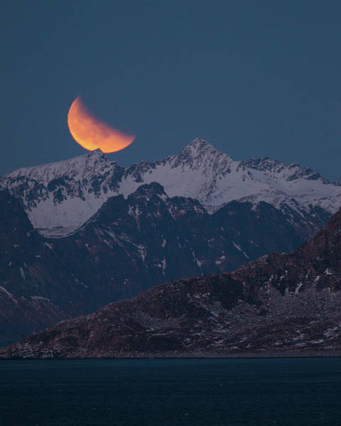 Photograph - Lunar Eclipse In Lofoten by Alex Conu