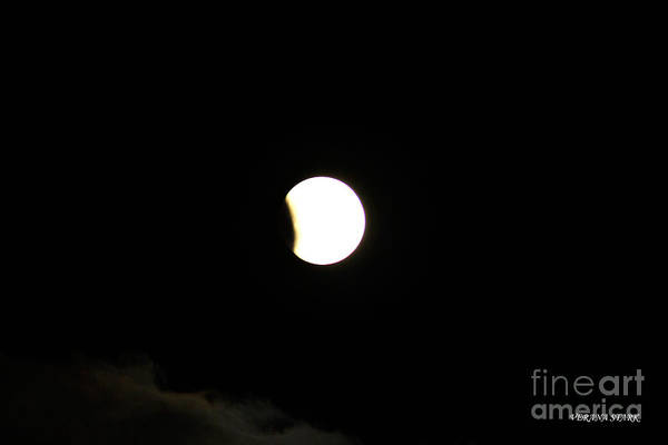 Wall Art - Photograph - Lunar Eclipse Of The Supermoon September 27th 2015 by Verana Stark